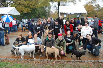 Team Monster Minders At The 2009 Mutt Strut T-Shirt Photo