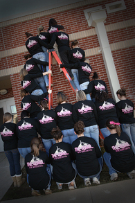 Lchs Softball Beginning Our Climb... T-Shirt Photo