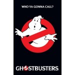 Ghostbusters Who Ya Gonna Call? Poster