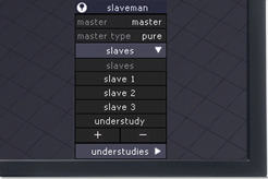 Features - slave manager