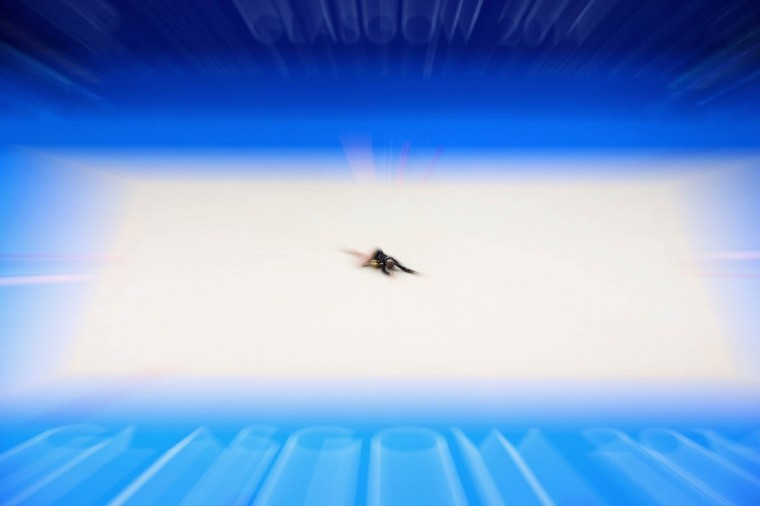 Lauren Brash of Scotland competes in the ball rotation of the Individual All-Around Final at SECC Precinct during day two of the Glasgow 2014 Commonwealth Games on July 25, 2014 in Glasgow, United Kingdom. (Mark Kolbe/Getty Images)