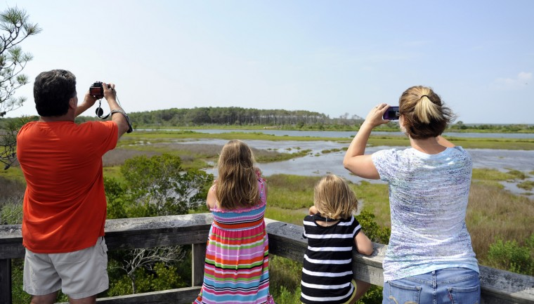 Left to right: John Sines, Gracie Paulman, 8, Malia Sines, 7 and Jennifer Sines, who are visiting from Meyersdale PA look at ponies in the distance on a marsh at Assateague National Seashore. (Barbara Haddock Taylor/Baltimore Sun)
