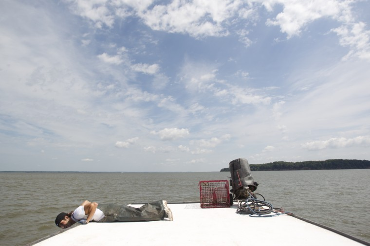 Deckhand Craig Schuchart, 22, of Bowley's Quarters looks over the edge of the roof of Tony Conrad's boat for a crab pot while crabbing. (Jen Rynda/BSMG)