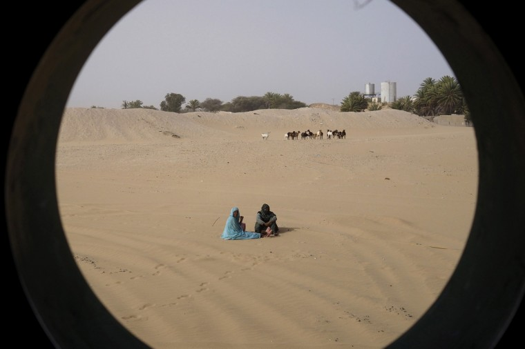 People are seen sitting near to a herd of goats from a window on SNIM train carrying iron ore and mine workers outside Nouadhibou June 25, 2014. Mauritania's SNIM iron ore mining company aims to produce 13 million tonnes in 2014, around the same level as last year, the majority state-owned firm said. SNIM mines black iron ore in the northern town of Zouerate, a remote desert location which nevertheless attracts people from all over the country looking for work. SNIM employees proudly call their firm the lung of their nation's economy and the train that ferries the ore to the coast stretches some two kilometres, making it one of the world's longest. Picture taken June 25, 2014. REUTERS/Joe Penney