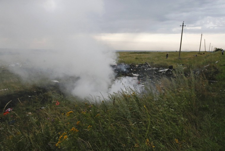 The site of a Malaysia Airlines Boeing 777 plane crash is seen near the settlement of Grabovo in the Donetsk region, July 17, 2014. The Malaysian airliner MH-17 was brought down over eastern Ukraine on Thursday, killing all 295 people aboard and sharply raising stakes in a conflict between Kiev and pro-Moscow rebels in which Russia and the West back opposing sides. (Maxim Zmeyev/Reuters)