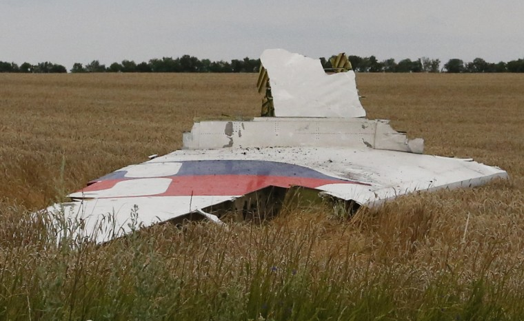 A part of the wreckage of a Malaysia Airlines Boeing 777 plane is seen after it crashed near the settlement of Grabovo in the Donetsk region, July 17, 2014. The total number of dead in the crash of the Malaysia Airlines MH-17 plane in eastern Ukraine is more than 300 and includes 23 U.S. citizens, a Ukrainian interior ministry aide said. (Maxim Zmeyev/Reuters)