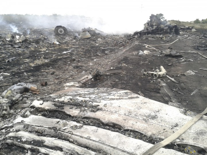 A general view shows the site of a Malaysia Airlines Boeing 777 plane crash in the settlement of Grabovo in the Donetsk region, July 17, 2014. The Malaysian airliner was shot down over eastern Ukraine by pro-Russian militants on Thursday, killing all 295 people aboard, a Ukrainian interior ministry official said. (Maxim Zmeyev/Reuters)
