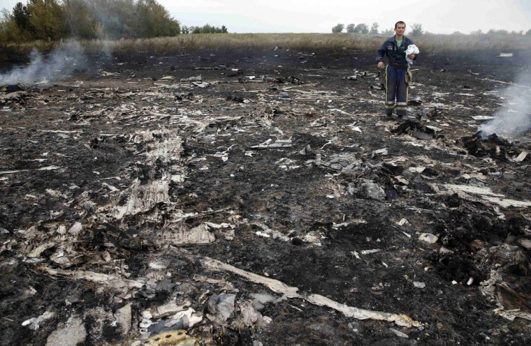 An Emergencies Ministry member walks at the site of a Malaysia Airlines Boeing 777 plane crash near the settlement of Grabovo in the Donetsk region, July 17, 2014. The Malaysian airliner Flight MH-17 was brought down over eastern Ukraine on Thursday, killing all 295 people aboard and sharply raising the stakes in a conflict between Kiev and pro-Moscow rebels in which Russia and the West back opposing sides. (Maxim Zmeyev/Reuters)