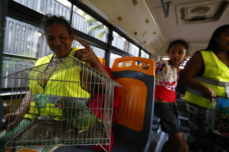 "Evicted resident of Tower of David Maria Davila and her parrot Coti sit in a bus which will transport them to their new home in Caracas July 22, 2014. Venezuelan soldiers and officials began moving hundreds of families on Tuesday out of a half-built 45-story skyscraper that dominates the Caracas skyline and is thought to be the tallest slum in the world. The mass eviction from the ""Tower of David"", originally intended to be a bank center but abandoned since 1994 and later home to some 3,000 needy Venezuelans, proceeded peacefully. (Jorge Silva/Reuters)"