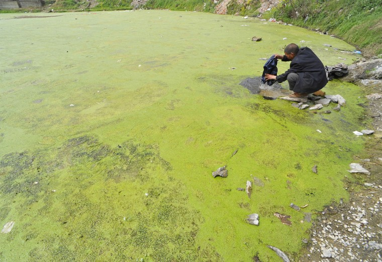 A resident washes clothes in a polluted pond in Xiangfan, Hubei province, March 21, 2010. (REUTERS/Stringer)