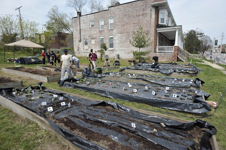 Volunteers work to transform a vacant lot into a community garden through Baltimore Reads, a literacy advocacy group. The garden, called the Literacy Garden, across from St. Ambrose Outreach Center on Park Heights Avenue, will provide a place for people to come to read. (Kim Hairston/Baltimore Sun/April 2012)