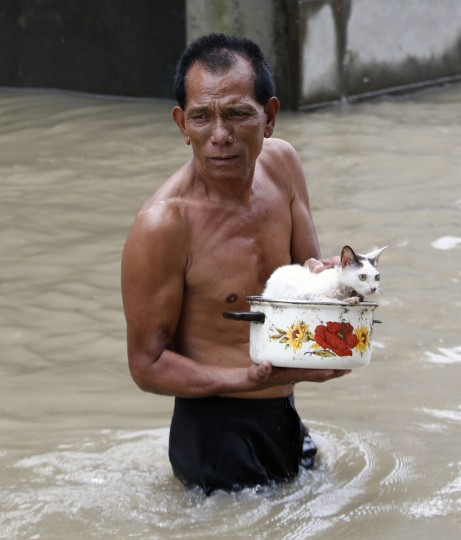 "A man wades through flood waters with his cat on a cooking pot in Hermosa, Bataan, northwest of Manila August 5, 2014. Typhoon Halong, locally named ""Jose,"" has intensified monsoon rains resulting in flooding in several parts of northern Philippines, local media reports said. (REUTERS/Erik De Castro)"