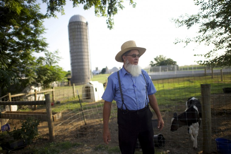 John Fisher, an Amish buggy driver, leads tourists through Lancaster County, Pennsylvania August 9, 2014. (Mark Makela/Reuters)