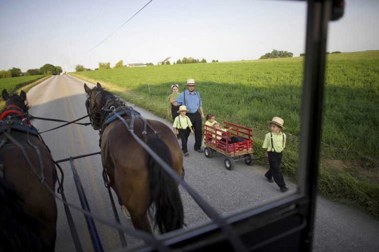 An Amish family walks to their friends' house for a visit as seen on a buggy tour through Lancaster County, Pennsylvania August 9, 2014. (Mark Makela/Reuters)