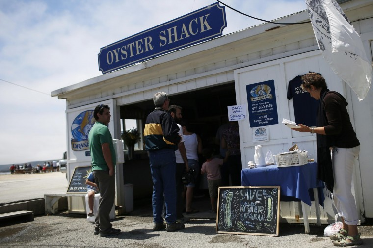 Customers stand in line to purchase oysters at Drakes Bay Oyster Company in Inverness, California July 31, 2014. (Stephen Lam/Reuters)