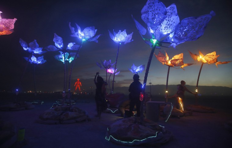 "The art installation Pulse & Bloom is seen at nigth during the Burning Man 2014 ""Caravansary"" arts and music festival in the Black Rock Desert of Nevada, August 29, 2014. (Jim Urquhart/Reuters)"