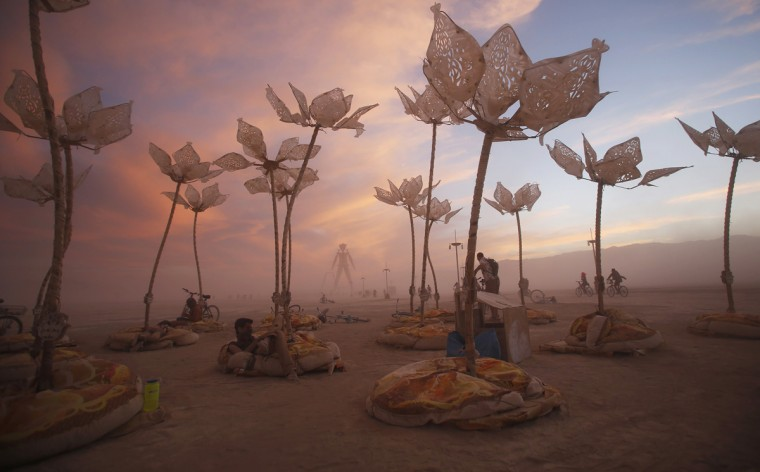 "The art installation Pulse & Bloom is seen during the Burning Man 2014 ""Caravansary"" arts and music festival in the Black Rock Desert of Nevada, August 29, 2014. (Jim Urquhart/Reuters)"