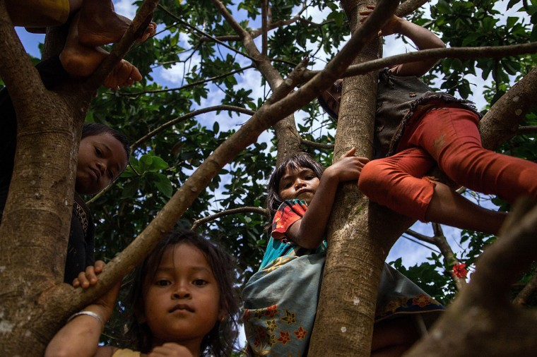 Children from the Bunong indigenous group climb trees in Mondulkiri, Cambodia. Cambodia's indigenous groups are at risk as their ancestral lands are being threatened by businesses interested in commercially developing the areas. On August 9, the UN focuses on the rights of the World's Indigenous People on International Indigenous People's Day. (Hannah Reyes/Getty Images)