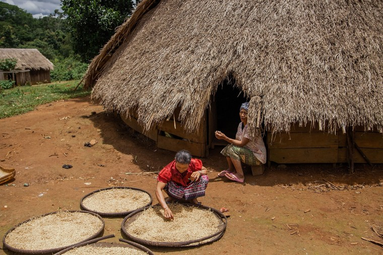 Women from the Bunong indigenous group carry out their chores by their home in Mondulkiri, Cambodia. Cambodia's indigenous groups are at risk as their ancestral lands are being threatened by businesses interested in commercially developing the areas. On August 9, the UN focuses on the rights of the World's Indigenous People on International Indigenous People's Day. (Hannah Reyes/Getty Images)