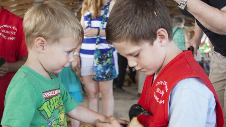4-H member Ryan Ellis, right, 6, from Sykesville volunteers at the Kids and Critters Barn where Jake Hartman, 2, from Columbia pets a baby duck. (Lena Salzbank/BSMG)