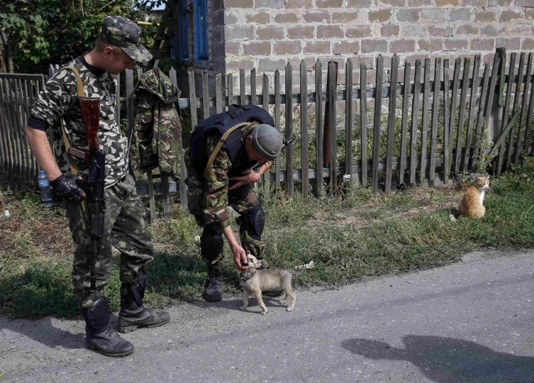 Ukrainian servicemen play with a dog as they stand guard in Volnovaha, Donetsk region, September 11, 2014. Ukraine's President Petro Poroshenko said on Wednesday Russia had removed the bulk of its forces from his country, raising hopes for a peace drive now underway after five months of conflict in which more than 3,000 people have been killed. REUTERS/Gleb Garanich