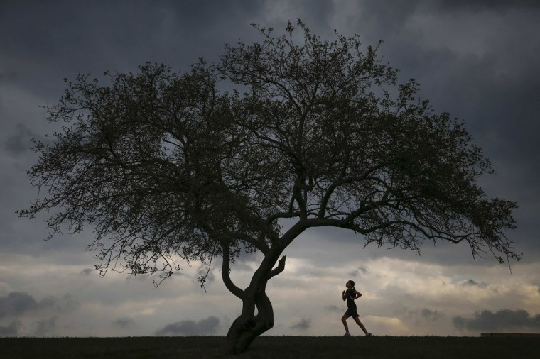 A woman is seen jogging at Cunningham Park in the borough of Queens in New York, September 16, 2014. (REUTERS/Shannon Stapleton)