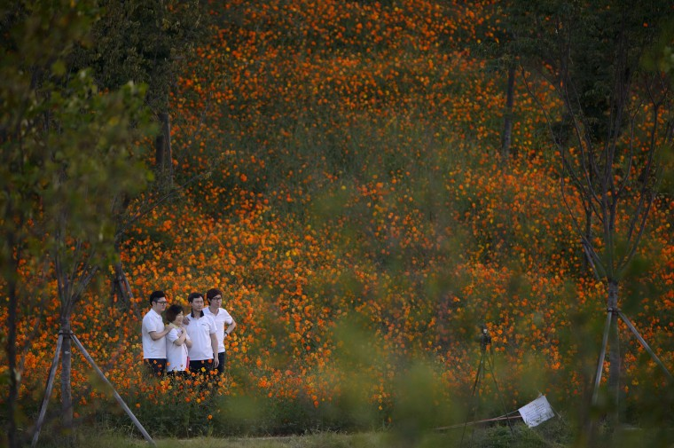 A family pose for photos amongst flowers on a hillside near the field hockey venue of the 2014 Asian Games in Incheon. (Ed Jones/AFP-Getty Images)