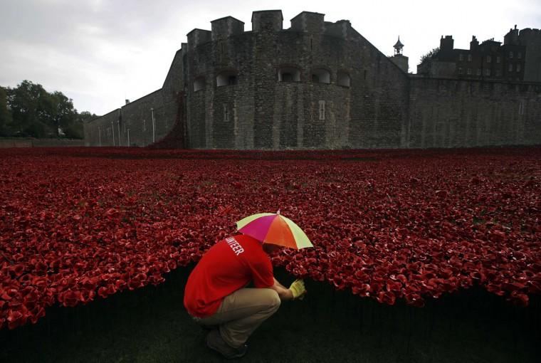 "A volunteer plants ceramic poppies in the rain amongst other poppies that form part of the art installation called ""Blood Swept Lands and Seas of Red"" at the Tower of London October 9, 2014. he evolving art installation, which will be completed on November 11, will create a commemoration for the centenary of World War One. (Luke MacGregor /Reuters)"