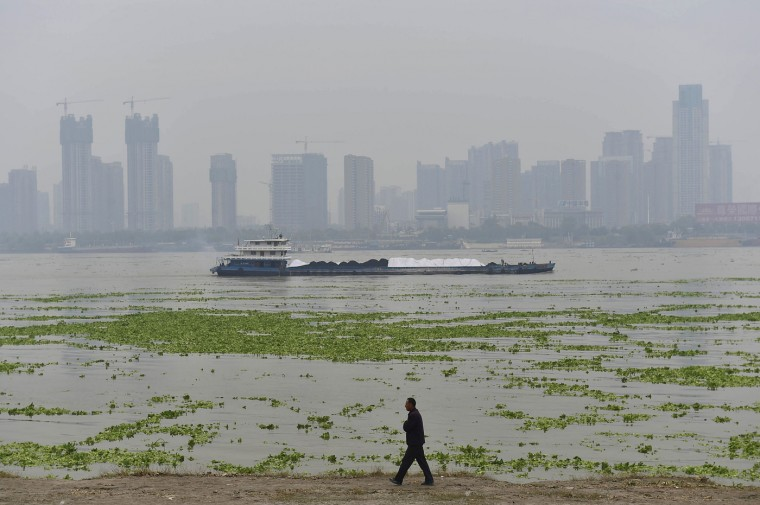 A man walks along the bank of the Yangtze River, which is covered by algae, during a hazy day in Wuhan, Hubei province, October 16, 2014. The Ministry of Environmental Protection of China announced on Wednesday that it would run a campaign of unannounced and drone inspections of air quality from October to next March. Unlike regular checks, in which companies and authorities targeted are usually notified beforehand, the upcoming inspections will be conducted at random times, and those found wanting will be immediately named and shamed, said the ministry in a statement, Xinhua News Agency reported. (Darley Shen/Reuters)
