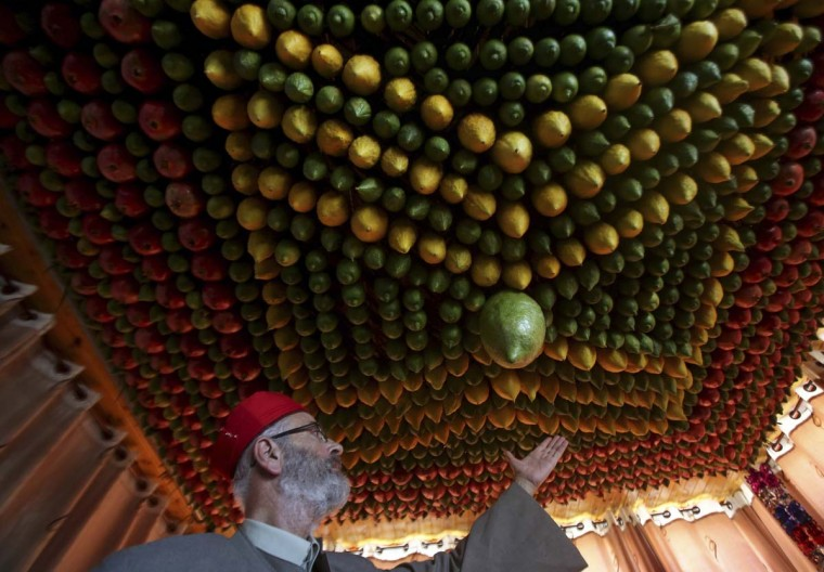 A member of the Samaritan sect decorates a traditional hut known as a sukkah with fruits and vegetables on Mount Gerizim, on the outskirts of the West Bank City of Nablus October 6, 2014. A sukkah is a ritual hut used during the week-long Jewish holiday of Sukkot which begins Monday at sundown. The Samaritans, who trace their roots to the northern Kingdom of Israel in what is now the northern West Bank, observe religious practices similar to those of Judaism. (Abed Omar Qusini/Reuters)