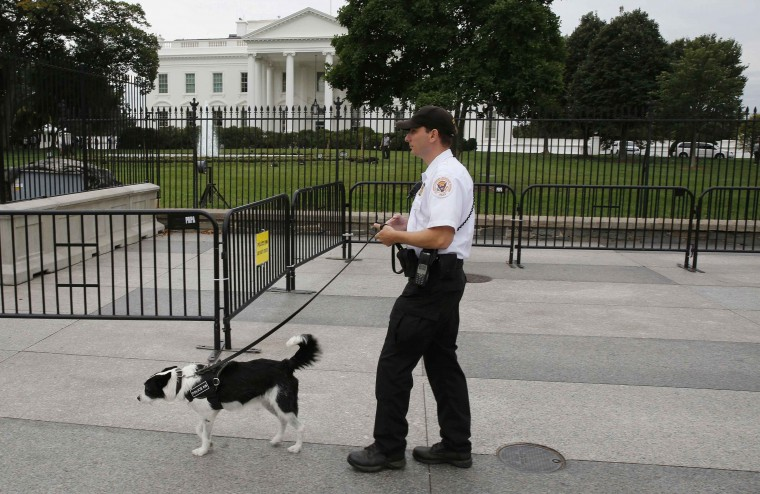 A U.S. Secret Service Uniformed Division officer and his bomb sniffing dog walk along the North fence of the White House along Pennsylvania Ave. in Washington, September 24, 2014. (Larry Downing/Reuters)