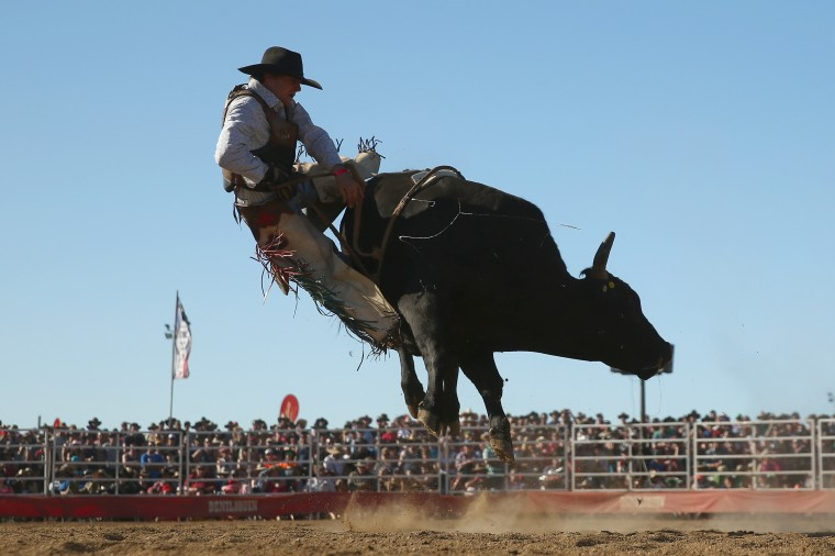 A bull rider is bucked off during the Bull Ride Spectacular on the second day of the 2014 Deni Ute Muster at the Play on the Plains Festival grounds in Deniliquin, Australia. (Mark Kolbe/Getty Images)