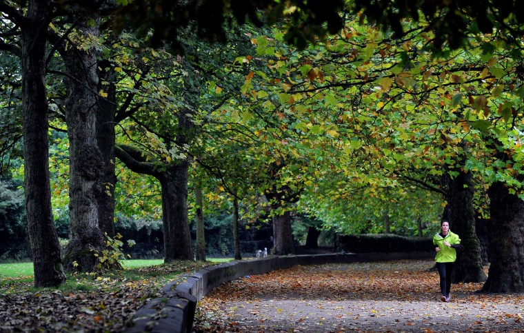 A woman runs along a tree lined path at Sefton Park in Liverpool, northwest England, on October, 14, 2014. (Paul Ellis/AFP/Getty Images)