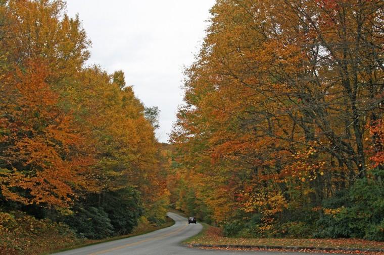Fall color on the Blue Ridge Parkway. (Marjie Lambert/Miami Herald/MCT)