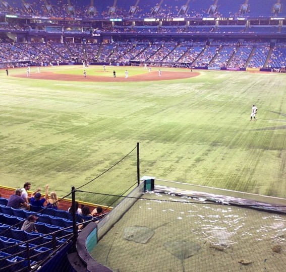 The view from above the Rays Tank at the Trop from the new 360 porch in center field on May 9, 2014.