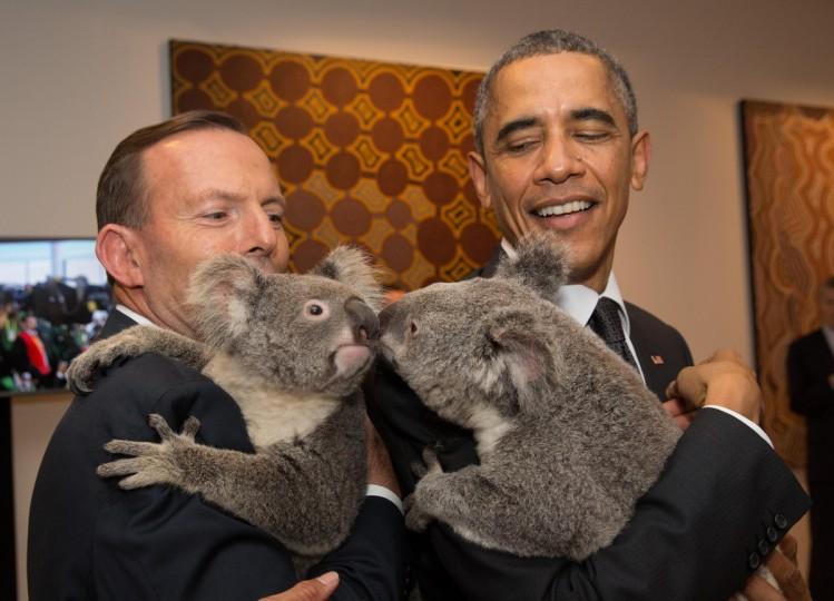Australia's Prime Minister Tony Abbott and United States' President Barack Obama meet Jimbelung the koala before the start of the first G20 meeting in Brisbane, Australia. (Andrew Taylor/G20 Australia via Getty Images)