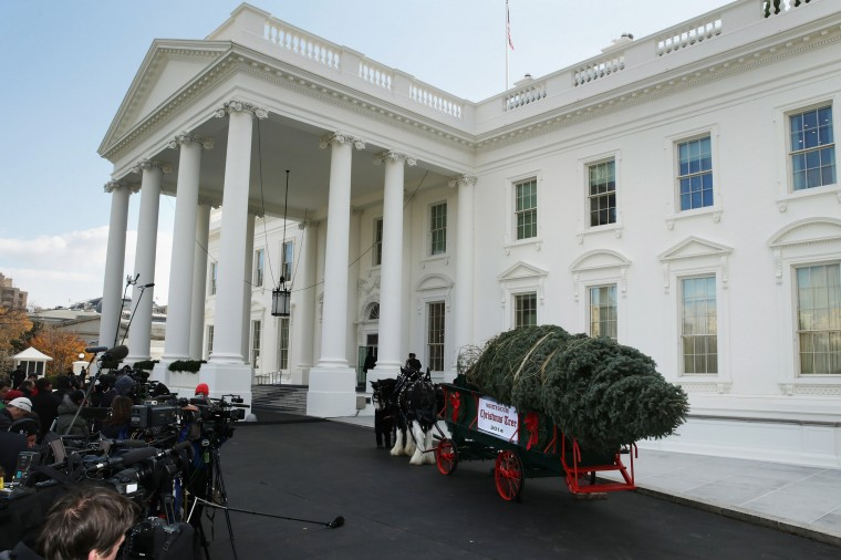 The official White House Christmas Tree from Lehighton, PA, arrives on the North Portico November 28, 2014 in Washington, DC. The 18 1/2 feet tall white fir tree will be displayed in the Blue Room and will be the centerpiece of the White House holiday decorations. (Photo by Chip Somodevilla/Getty Images)