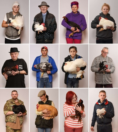 A combination of pictures created shows Poultry fanciers with their entries at the National Poultry Show, hosted by 'The Poultry Club of Great Britain' and held at The International Centre in Telford, Shropshire, in the West Midlands. (L-R top row) Jane Morgan with her Barbu d'Uccle Bantam named 'Chianti', Sam Troth with his Japanese Bantam Cock, Tracey Gunning with her Malay Asian Hard Feather, Georgina Keam with her White Wyandotte Bantam Cock named 'Lincoln' (L-R middle row) Richard Rowley with his Blue-laced Wyandotte Bantam Cockerel, Steve Dace with his Silver-laced Wyandotte Large Fowl, James Bett with a White Cochin Large Fowl Hen, David Iley with his Japanese Bantam Male Mottled Frizzle (L-R bottom row) Nigel Allman with his Black Bantam Orpington, Alyce Fisher with her Buff Orpington Cock, Jane Morgan with her Barbu d'Uccle Bantam named 'Chianti' and Richard Boden with his Rumpless Booted Bantam. (Oli Scarff/Getty Images)