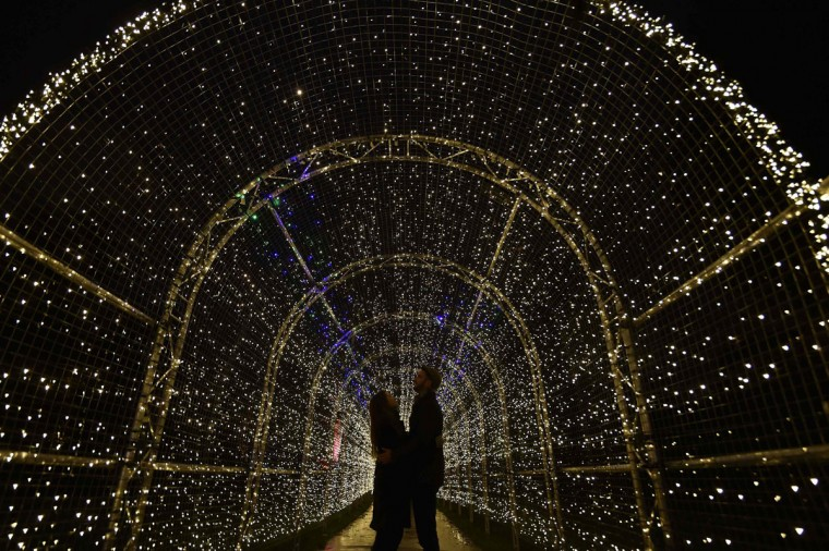Alex Little (R) and Miranda Jenatka pose as they view a light installation at Kew Gardens in west London, November 25, 2014. The annual Christmas illuminated night trail at the botanical gardens will open from Wednesday until January 3, 2015. (REUTERS/Toby Melville)