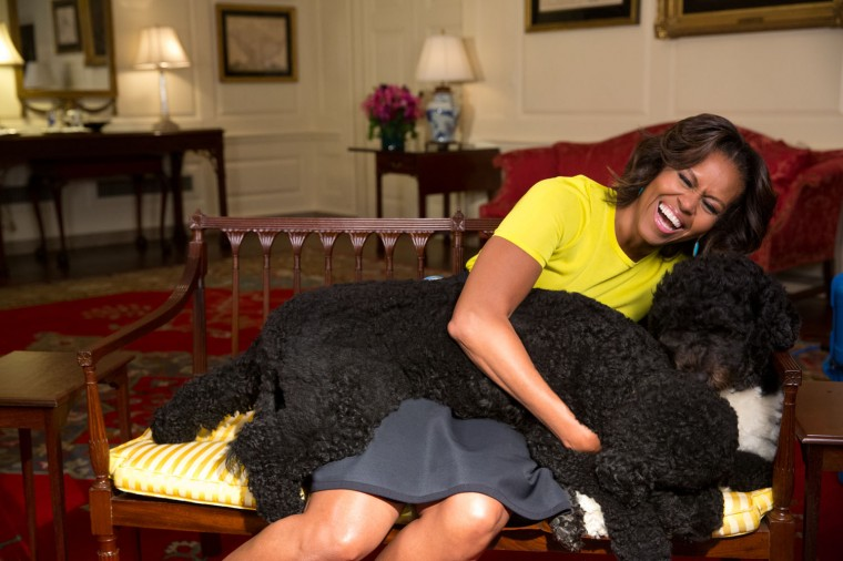 "April 14, 2014 ""Amanda Lucidon captured this spontaneous moment as the First Lady hugged family pets Sunny and Bo during a video taping in the Map Room of the White House."" (Official White House Photo by Amanda Lucidon)"