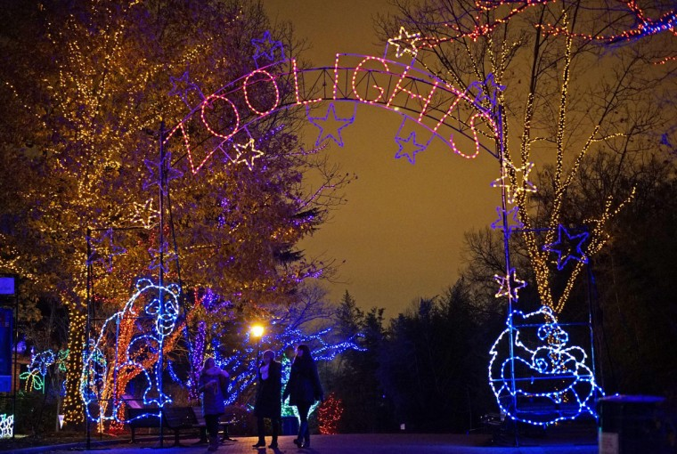 "The National Zoo is decorated for the Christmas Season on December 8, 2014 in Washington, DC. ""ZooLights"", when the zoo is illuminated by over 500,000 LED lights, will run from November 28 to January 1, 2015. (Mandel Ngan/AFP/Getty Images)"
