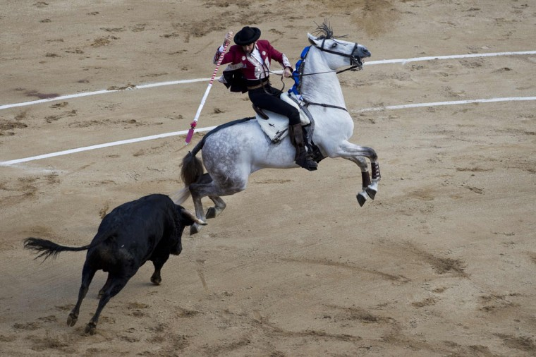 Spanish rejoneador Pablo Hermoso de Mendoza performs during a bullfight at the Canaveralejo bullring in Cali, department of Valle del Cauca, Colombia on December 29, 2014, in the framework of 57th Fair of Cali. Pablo Hermoso De Mendoza cuts two ears, Luis Bolivar cuts two ears and Ivan Fandino three ears. (Luis Robayo/AFP/Getty Images)