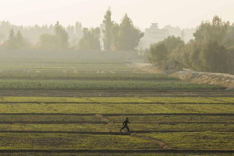 A young Afghan boy runs through a field near Forward Operating Base Fenty, in the Nangarhar province of Afghanistan, December 17, 2014.