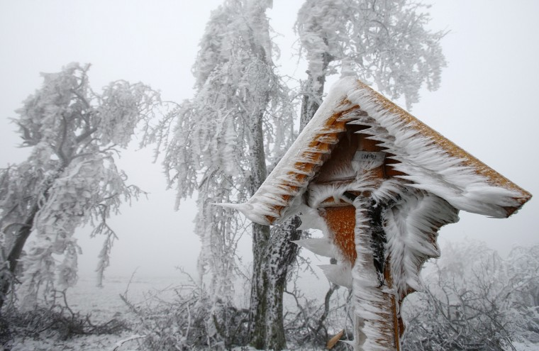 A roadside shrine is covered with ice near Reichpolds in northern Austria, December 3, 2014. Freezing fog and rain has covered parts of the region with ice, causing blocked roads due to fallen trees and closed schools for security reasons, local media report. (Heinz-Peter Bader/Reuters)