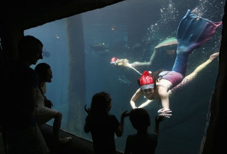 Visitors wave to a woman dressed as a mermaid wearing a Santa Claus cap as she performs from inside a tank at the Sao Paulo Aquarium December 17, 2014. According to organizers, the performance aims to narrate about the myth and legend of mermaids. REUTERS/Paulo Whitaker