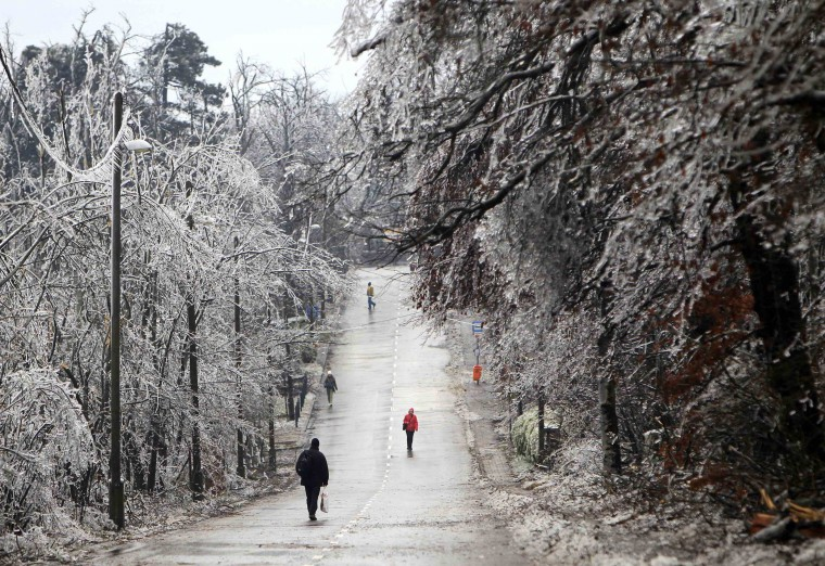 Peolpe walk under trees covered in ice in Buda hills in Budapest, December 3, 2014.Tens of thousand homes on the outskirts of Budapest went without electricity this week as freezing rain blanketed the area and falling trees cut power lines, Hungary's Disaster Relief Agency said. (Bernadett Szabo/Reuters)