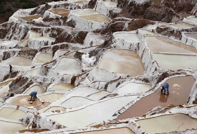 Workers collect salt from salt ponds at the Maras mines in Cuzco December 3, 2014. Salt has been obtained in Maras since pre-Incan times by evaporating highly salty local subterranean stream water. The water is intricately channelled through constructions, flowing gradually down onto several hundred ancient terraced ponds. From each pond, a local member of the mine cooperative can produce 150 to 200 kilos per month which can be sold in the markets at $0.34 per kilogram, according to miners. Picture taken December 3, 2014. REUTERS/Enrique Castro-Mendivil