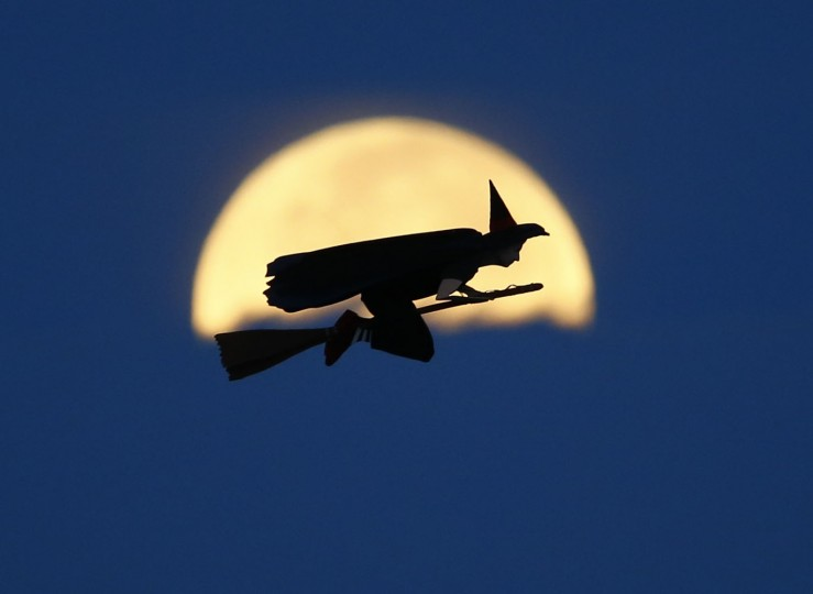 A radio-controlled flying witch makes a test flight past a moon setting into clouds along the pacific ocean in Carlsbad, California in this October 8, 2014 file photo. REUTERS/Mike Blake/Files