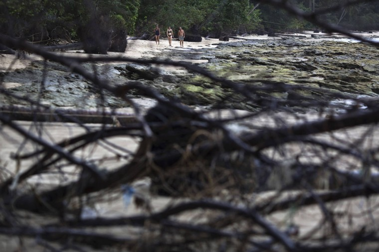 Foreign tourists walk on a small beach with fallen trees and damage still visible from the 2004 tsunami in Khao Lak, in Phang Nga province, about 110 km (68 miles) north of the resort island of Phuket, December 14, 2014.