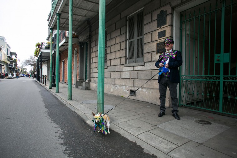 A man walks his dog in the French Quarter during Mardi Gras February 17, 2015 in New Orleans, Louisiana. Mardi Gras, or Fat Tuesday, is a celebration traditionally held before the observance of Ash Wednesday and the beginning of the Christian Lenten season. (Photo by Drew Anthony Smith/Getty Images)